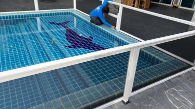 Pool Fence Thailand | Quality Screens Asia
